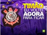 timao_3